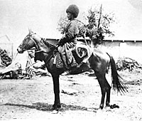 Turkoman horseman