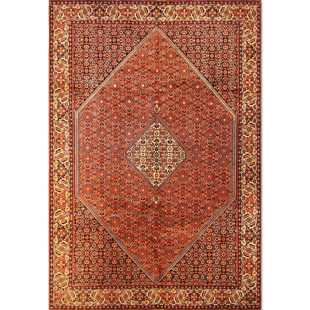Size 06x09 Bidjar Rug Iran